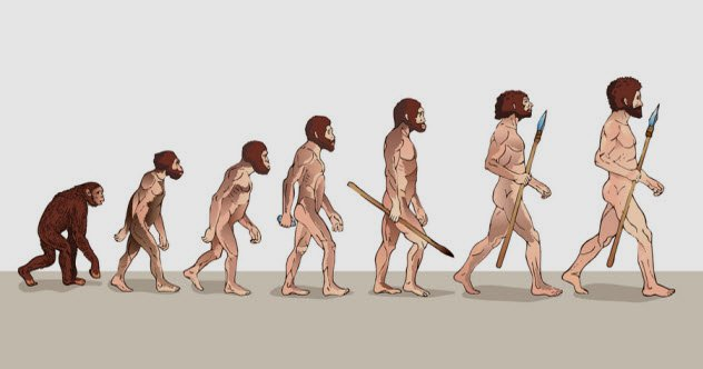 human evolution and how we adapt
